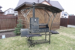 Barbeque with a cooktop and a canopy