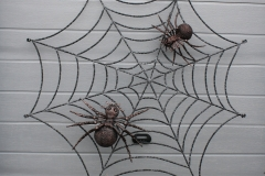 Blacksmith cobweb with the 2 spider
