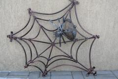 Zirnekļtīkls ar vienu zirnekli nr. 9