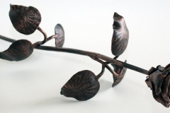 Blacksmith rose COPPER